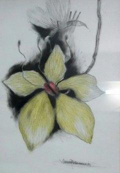 "Illusion, Flower & Pollen talk of Love & Procreation, Mixed Media ""In Stock"""
