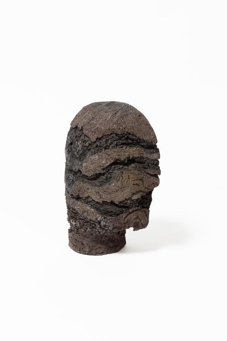 Modern Sierra Head For Sale