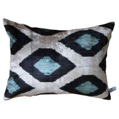 Silk Velvet Cushion v116