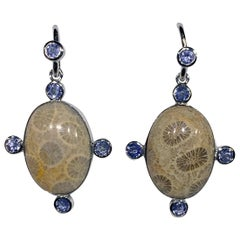 Silver Dangle Earrings with Tanzanite and Petosky Stone Cabochons