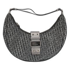 Silver Dior Bag in Monogram canvas and silver Leather.
