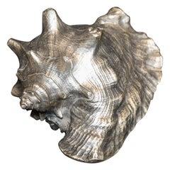 Silver Leaf Natural Sea Shell