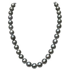 Silver Tahitian South Sea Pearl Necklace