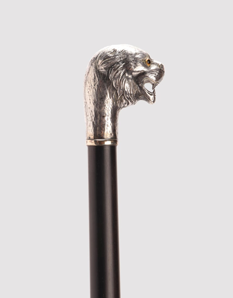 Walking stick: silver knob handle depicting the head of a lion with glass paste eyes. Hawthorn wood shaft and metal tip, London, UK, 1900 ca.