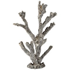 Silvered Coral