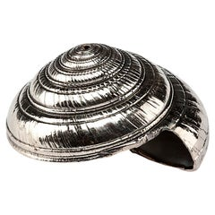 Silvered Sea Shell Architectonica