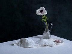 Still Life (Flower)