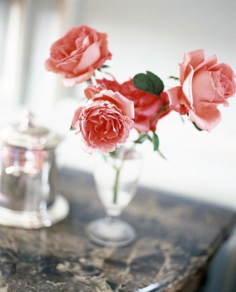 Simon Watson Color Photograph - Flower