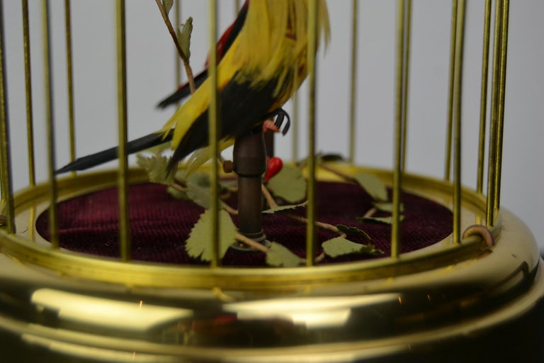 Singing Bird Cage Automaton by Hasu Germany, Mid-20th Century For Sale 7
