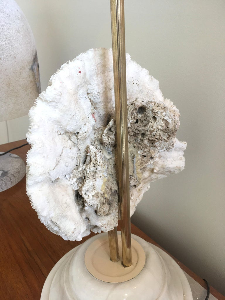 Mid-Century Modern Single Coral and Stone, Mid -Century Modern French Table Lamp, 1970s For Sale