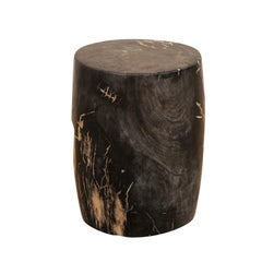 Single Petrified Wood Drinks Table 'or Stool' in Dark Tones