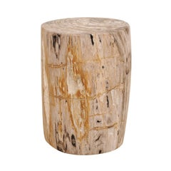 Single Petrified Wood Drinks Table 'or Stool', Light Colored