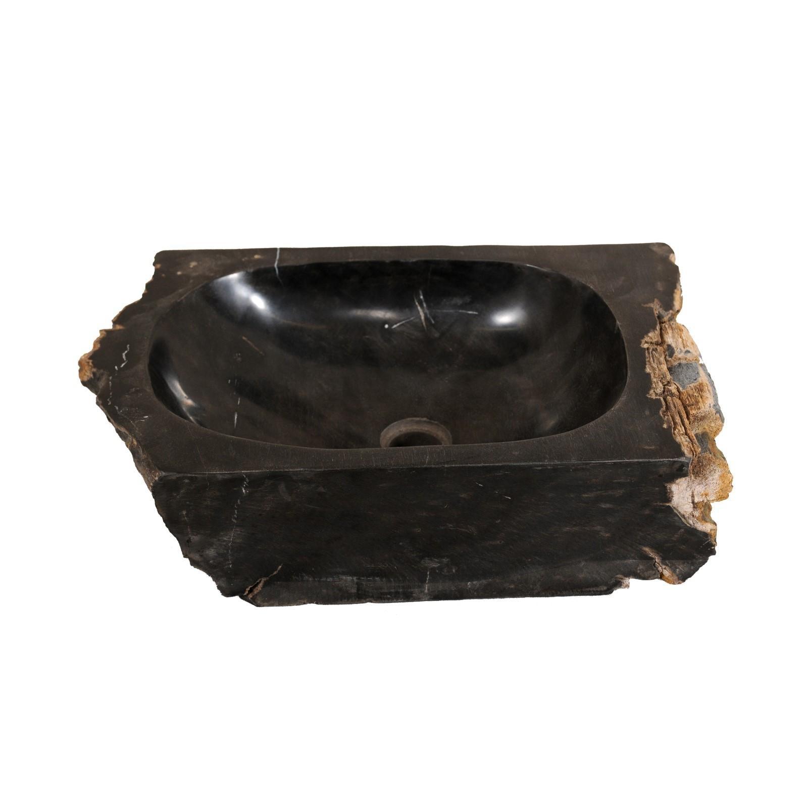 Single Polished Black Petrified Wood Sink