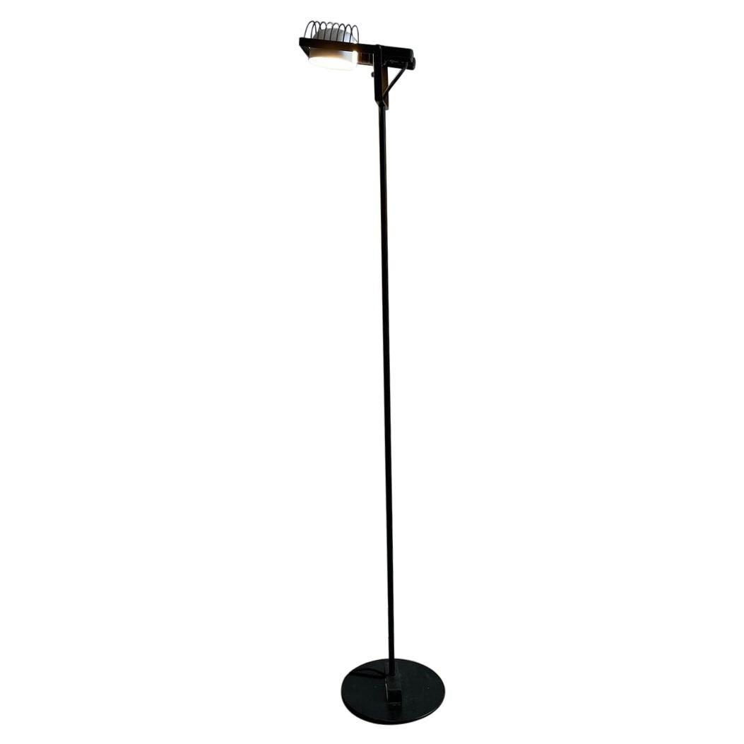 """Sintesi Terra"" Floor Lamp in Metal by Ernesto Gismondi for Artemide"