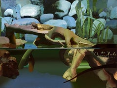 Tank, Still Life of Aquarium with Snake in Water, Rocks, Green Plants, Treetrunk