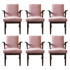 Six 20th Century Armchairs in Dusty Pink Velvet by Mieczyslaw Puchala, 1960s