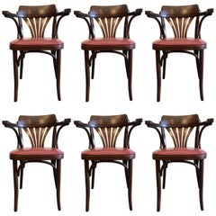 Six Bentwood Chairs by Drevounia, Czech Republic, 1950s