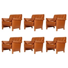 Six De Sede 'DS-14' Armchairs Lounge Chairs, Cognac Leather Teak, 1989
