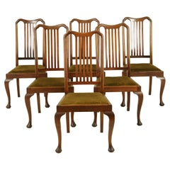 Six Dining Chairs, Antique Dining Chairs, Queen Anne Chairs, Walnut, 1920, B1407