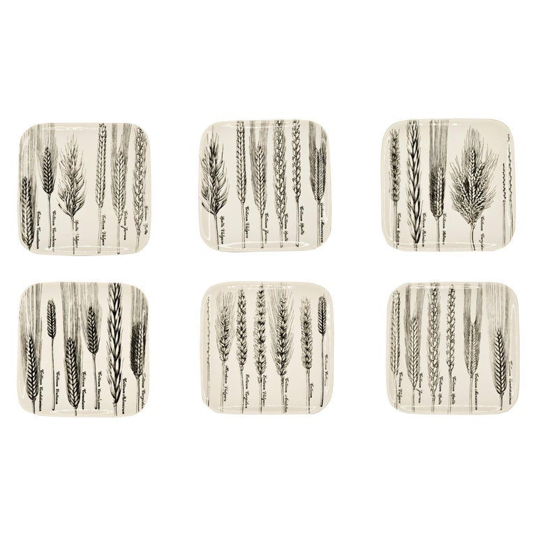 """Six Dishes """"Serie Spighe"""" 'Spikes Series' by Piero Fornasetti, 1960s For Sale"""