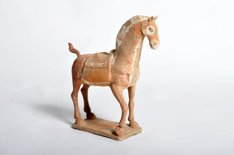 Six Dynasties Period Figure of a Horse For Sale 4