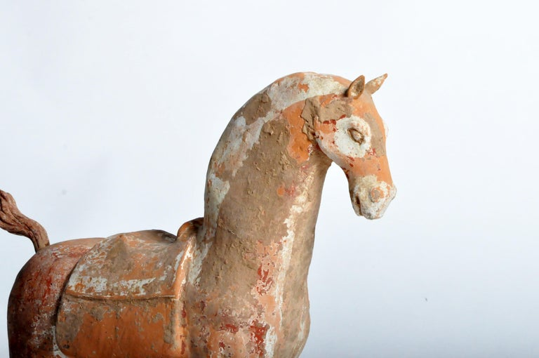 Six Dynasties Period Figure of a Horse For Sale 5