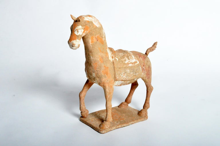 Six Dynasties Period Figure of a Horse For Sale 10