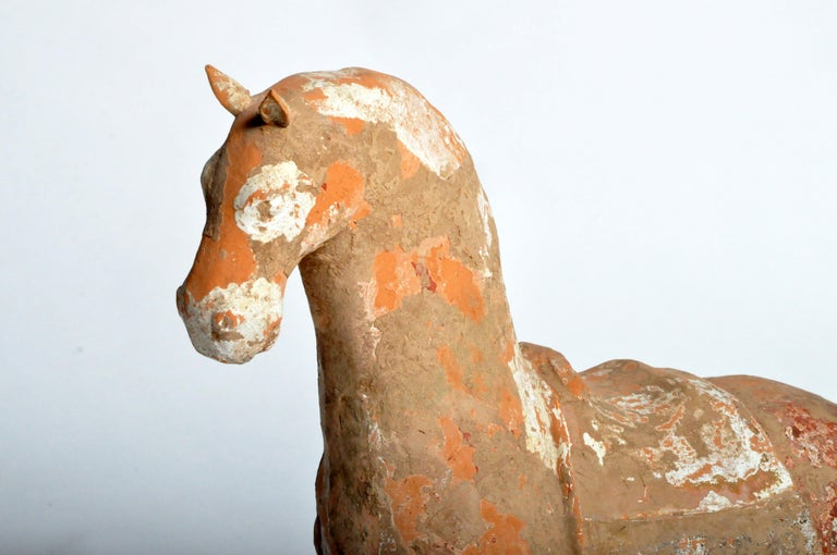 Six Dynasties Period Figure of a Horse For Sale 11