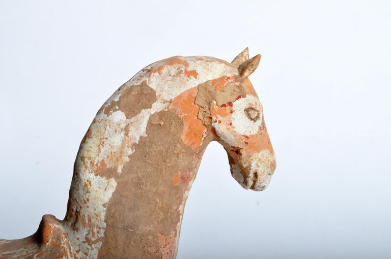 Terracotta Six Dynasties Period Figure of a Horse For Sale