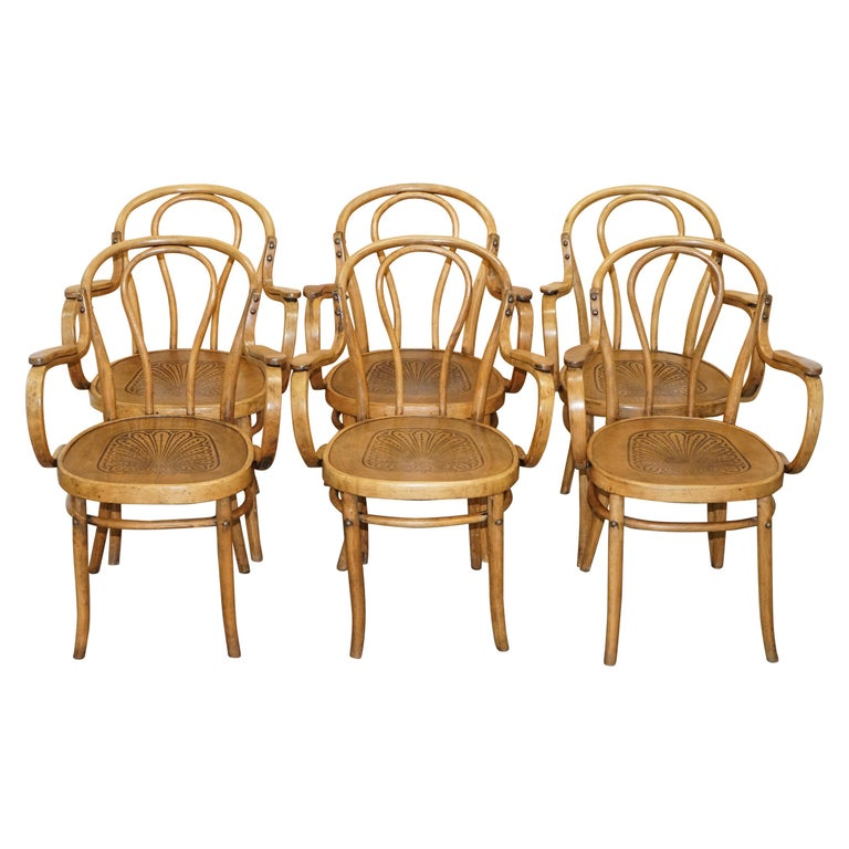 Six Fully Stamped circa 1900 Mundus J&J Jacob & Josef Kohn Bentwood Armchairs For Sale