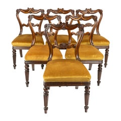 Six Gillows Regency Rosewood Dining or Side Chairs