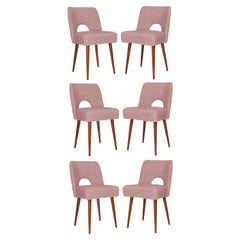 Six Pink Boucle 'Shell' Chairs, Poland, 1960s