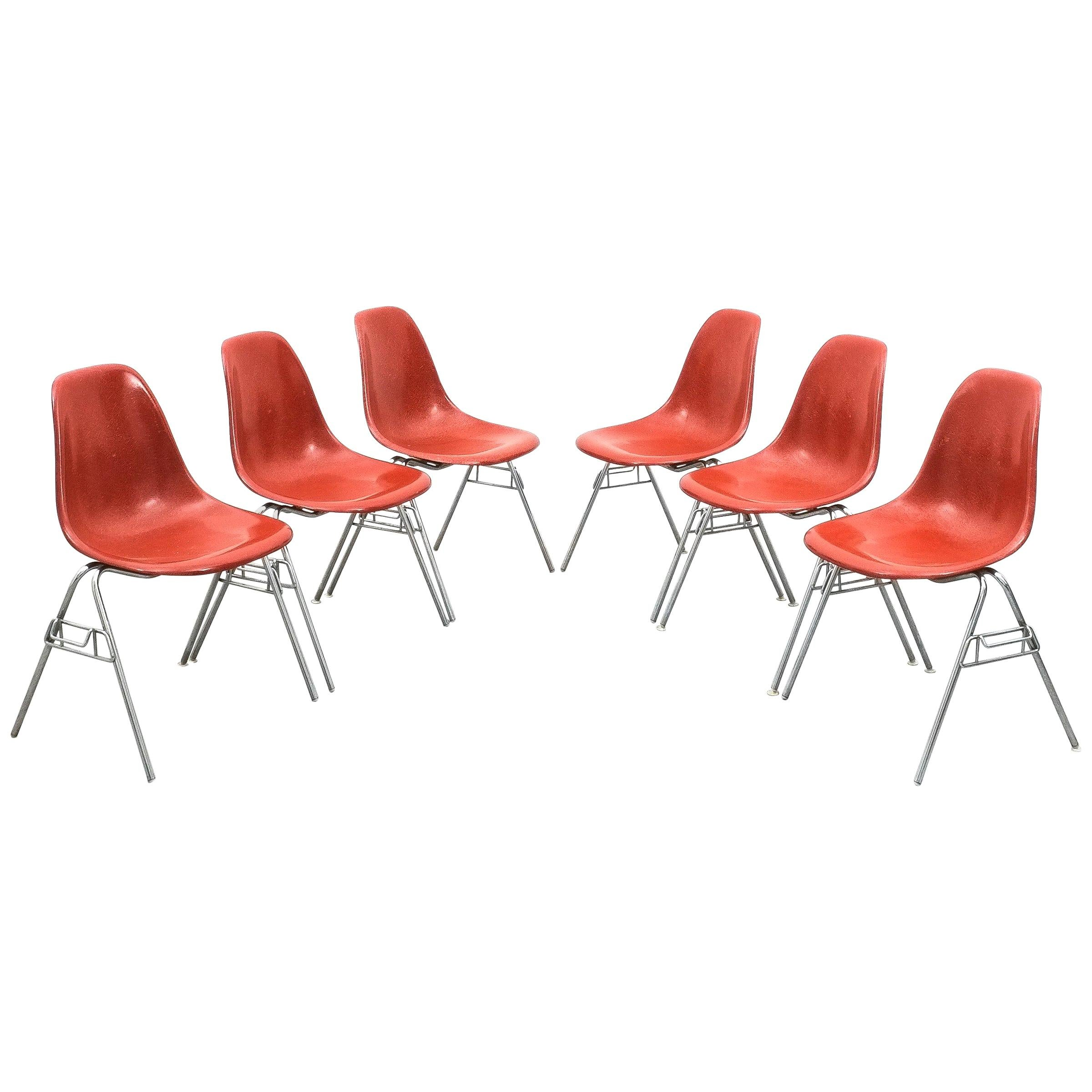 2 times Six Rare Herman Miller Eames Dining Chairs Terracotta, circa 1970