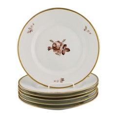 Six Royal Copenhagen Brown Rose Dinner Plates, 1960s