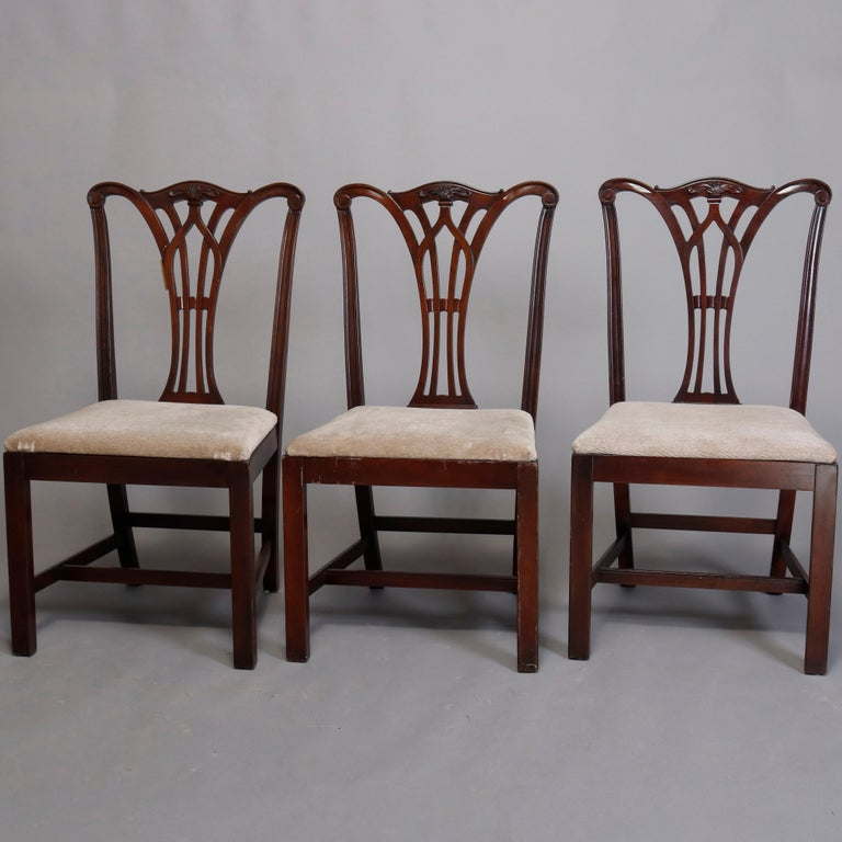 English Six Vintage Chippendale Style Carved Mahogany Ribbon Back Dining Chairs For Sale