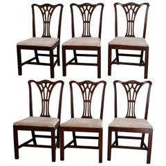 Six Vintage Chippendale Style Carved Mahogany Ribbon Back Dining Chairs