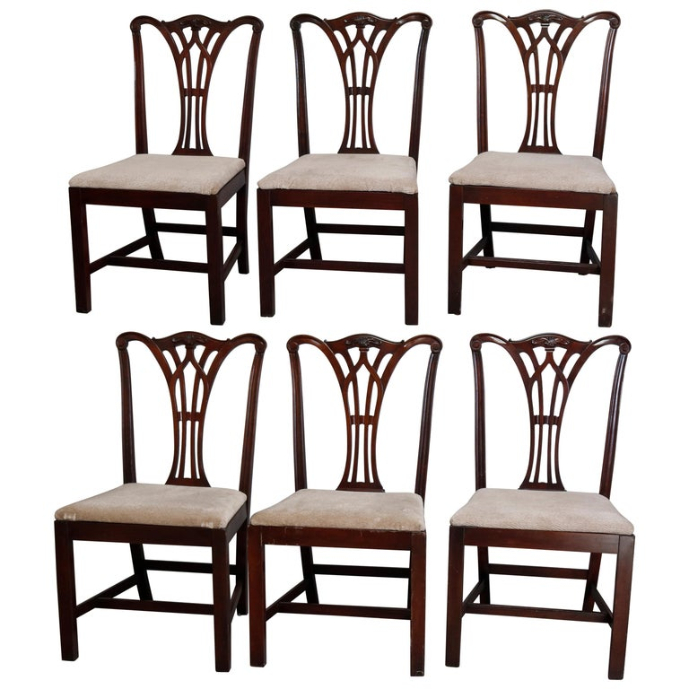 Six Vintage Chippendale Style Carved Mahogany Ribbon Back Dining Chairs For Sale