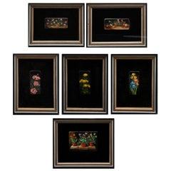 Six Vintage Miniature Paintings of Flowers