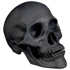 Skull Black Porcelain Sculpture