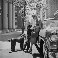 Inga Lindgren and Poodles - Slim Aarons, Twentieth Century Fashion Photography