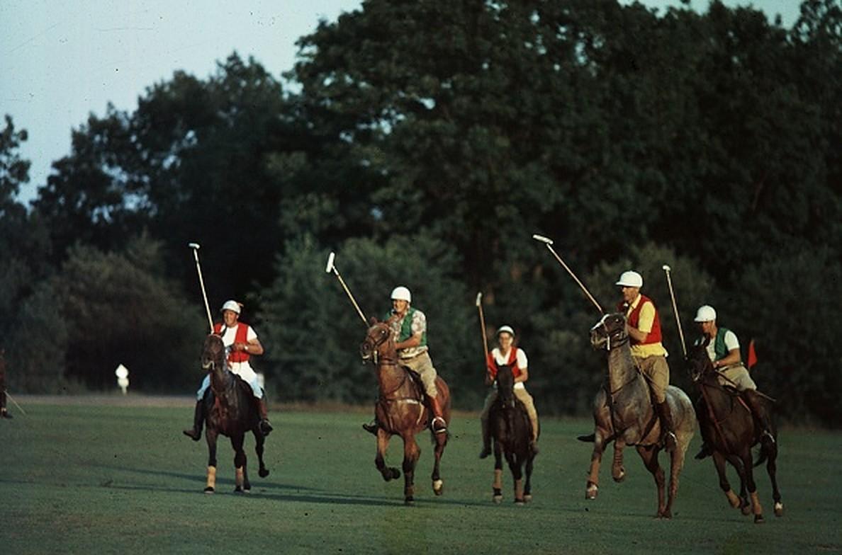 Spot the Ball - Slim Aarons, 20th century, Polo match, Horses, Club, Hamilton