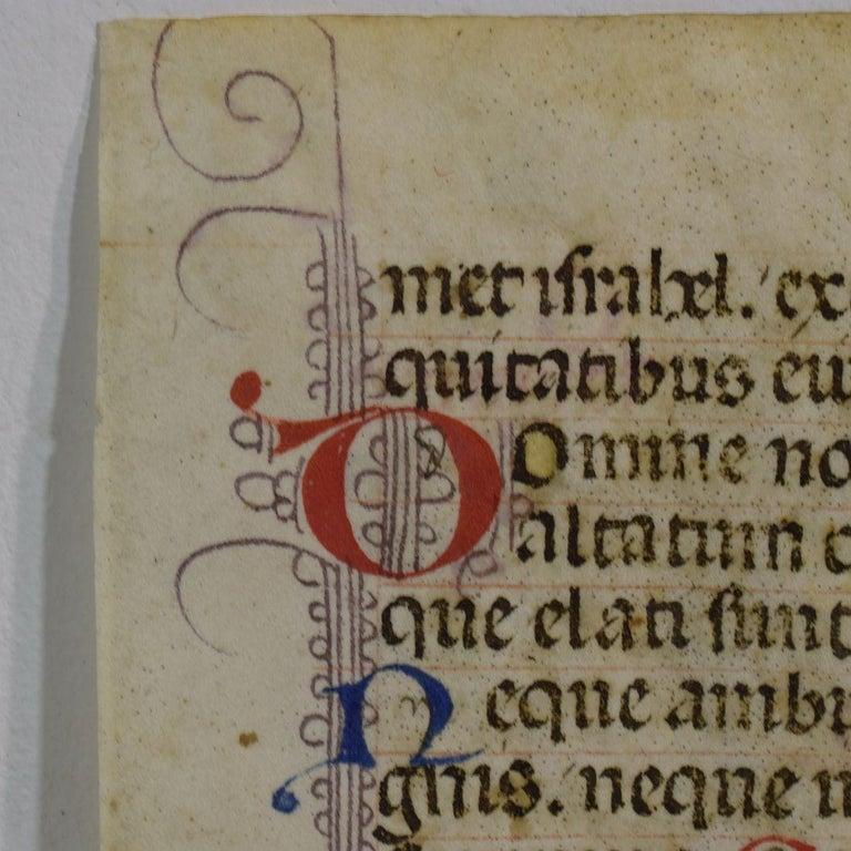 Gothic Small 15th Century Illuminated Vellum Book Page, Handwriting