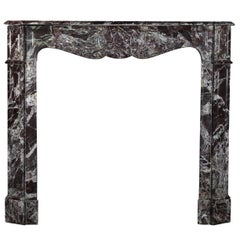 Small 19th Century Antique Marble Fireplace Surround