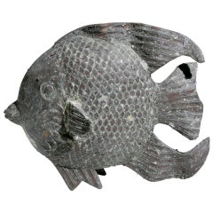 Small Angel Fish