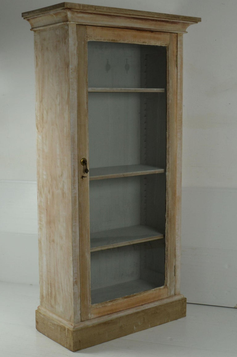 Georgian Small Antique Bleached Mahogany Cabinet or Bookcase For Sale