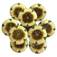 Small Austrian Water Lily Flower Plate Julius Dressler Circa 1900