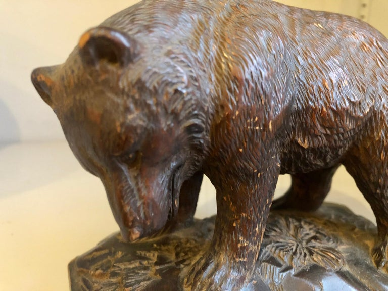 Small Black Forrest Carving of a Bear, 19th Century For Sale 3
