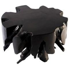 Small Black Round Teak Root Coffee Table