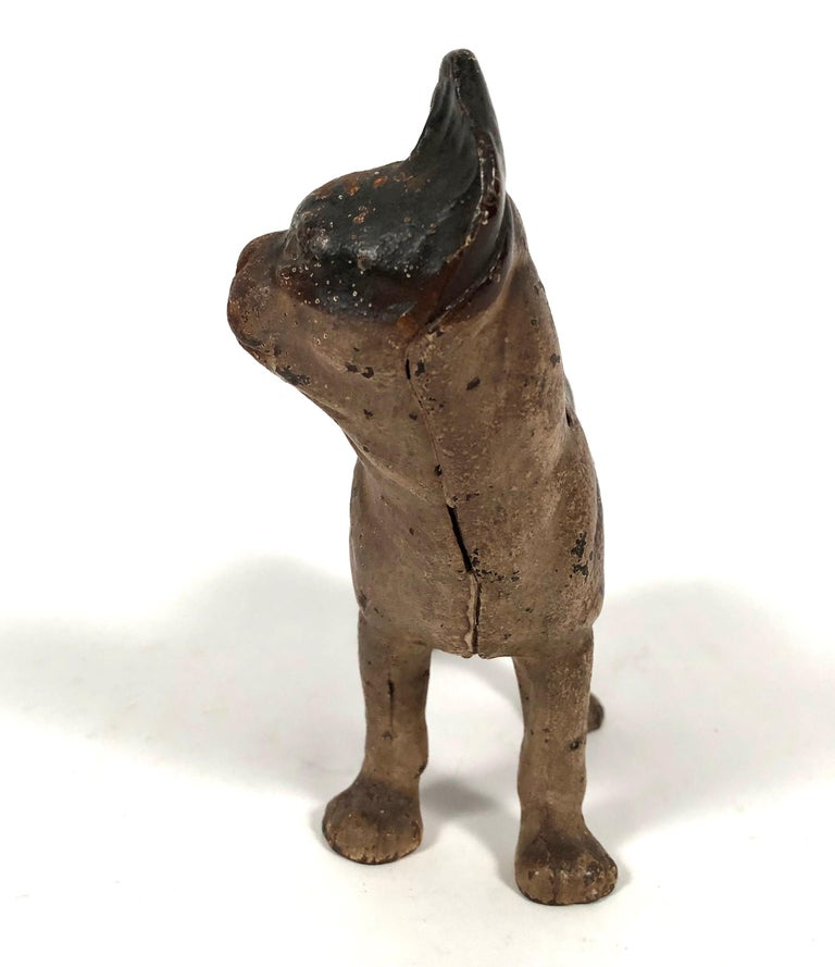 Early 20th Century Small Boston Terrier Painted Cast Iron Coin Bank For Sale