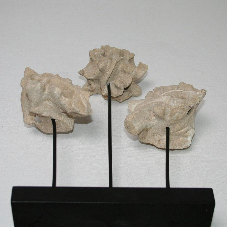 Small Collection of French Medieval Gothic Carved Stone Architectural Fragments For Sale 5